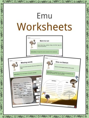 Animal Worksheets & Facts | Habitat, Farm Animals | Resources For Kids