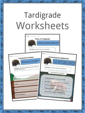 Tardigrade Worksheets