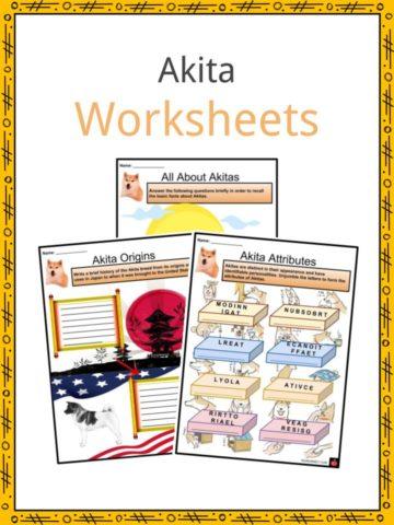 Akita Worksheets