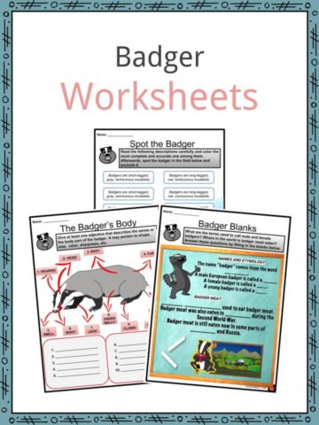 Badger Worksheets