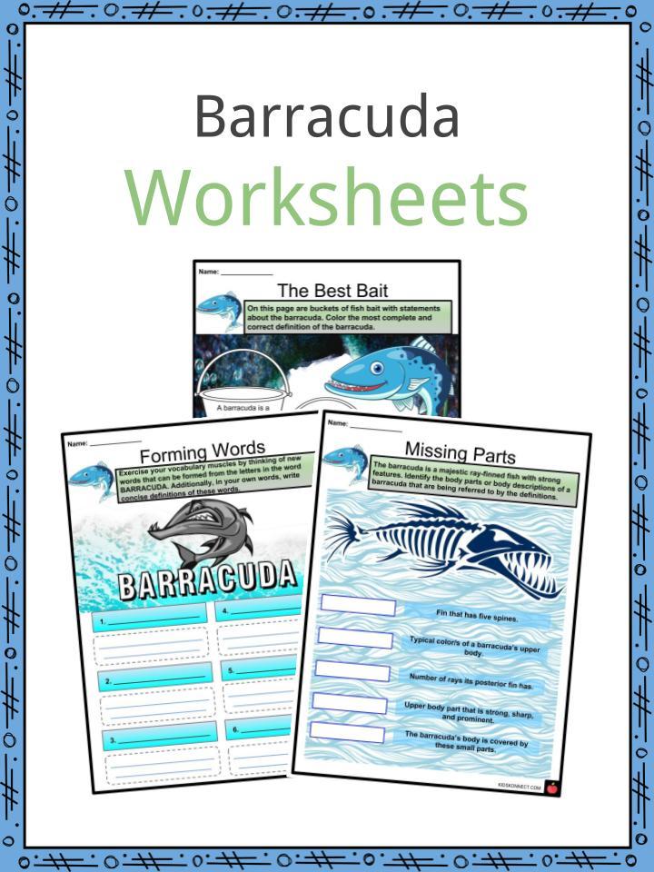 Barracuda Worksheets