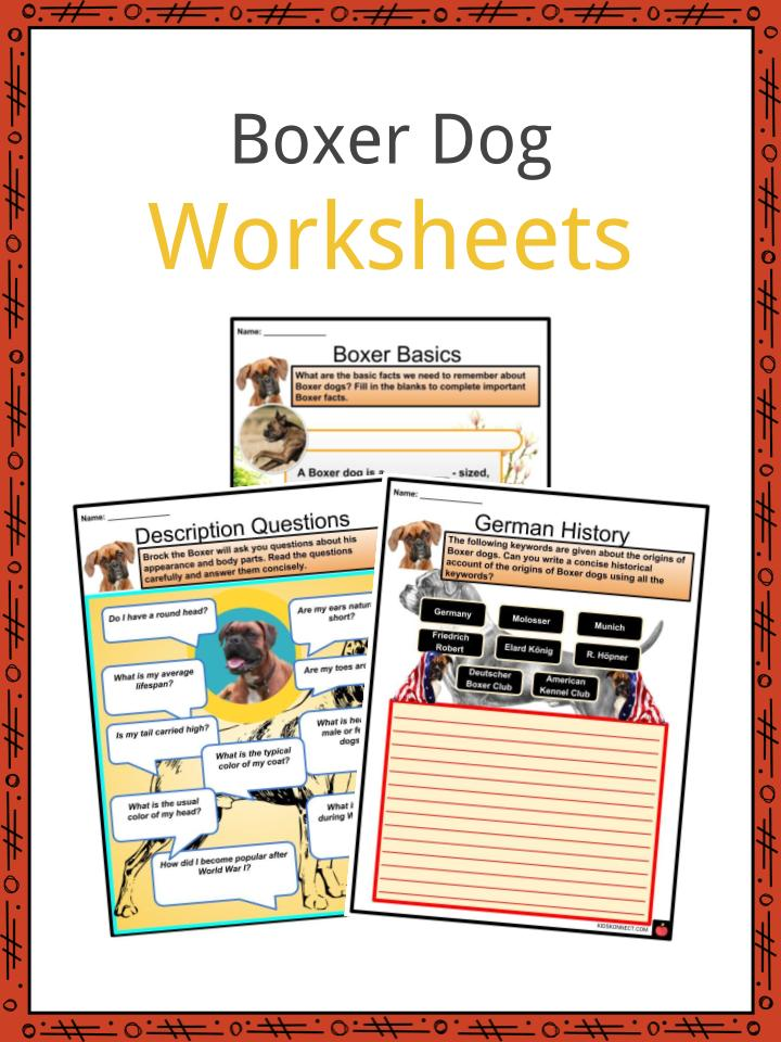 Boxer Dog Worksheets
