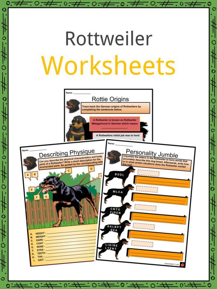 image regarding Grooming Tools for Horses Printable Worksheet identified as Rottweiler Information, Worksheets, Historical past, Temperament