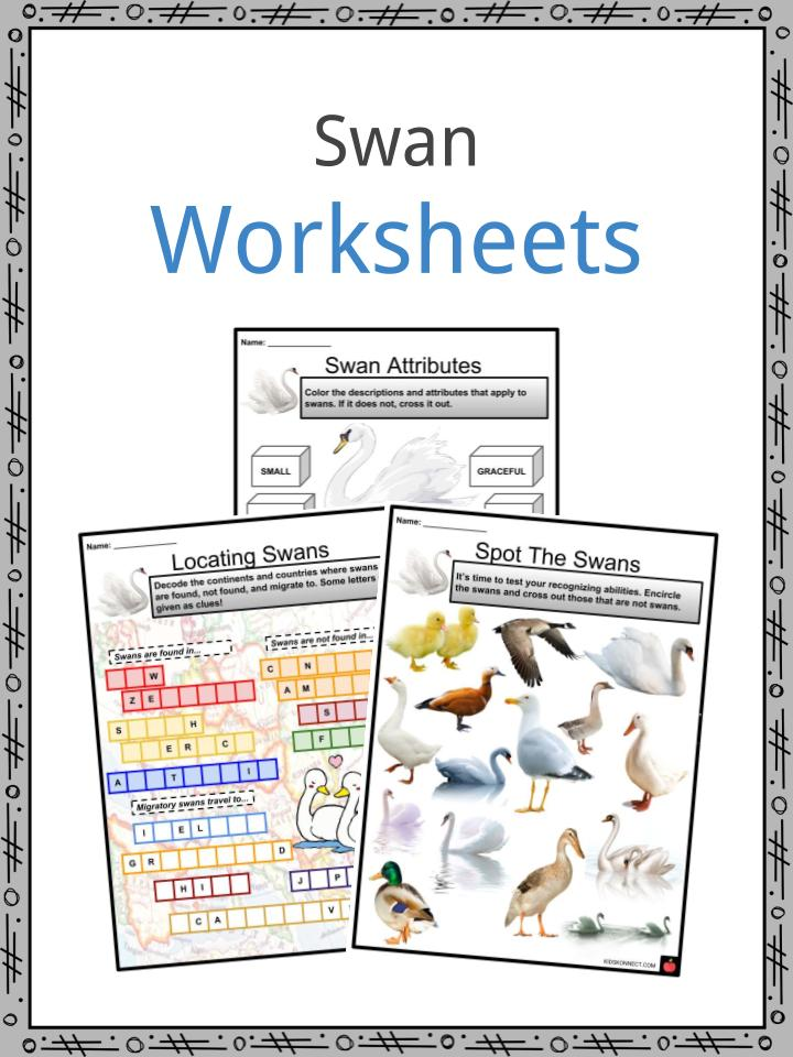 Swan Worksheets