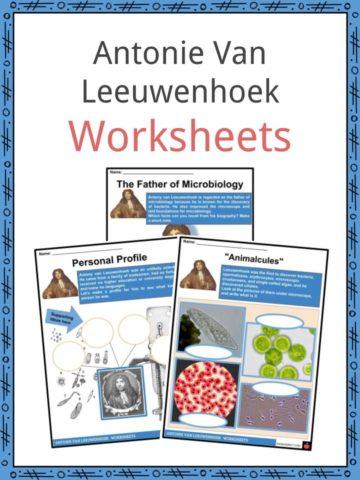 Antonie Van Leeuwenhoek Worksheets