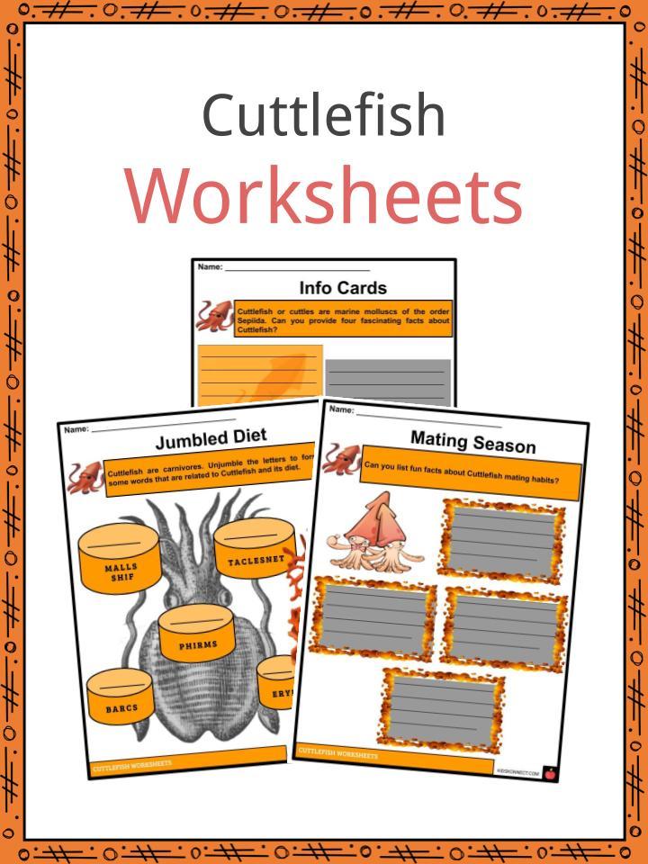 Cuttlefish Worksheets