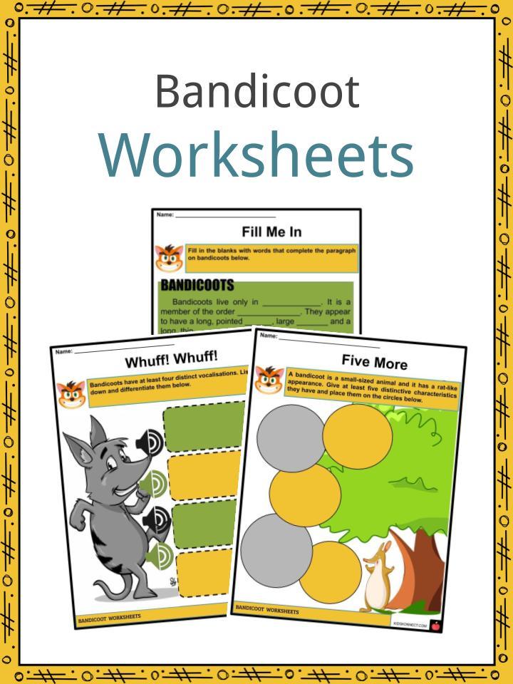 Bandicoot Worksheets
