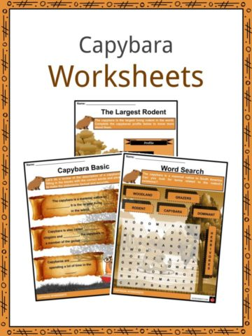 Capybara Worksheets