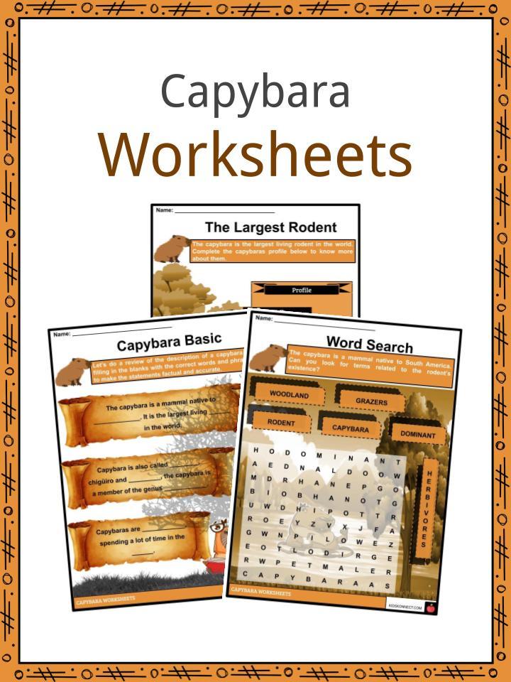 Capybara Worksheets