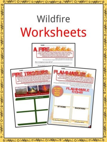 Wildfire Worksheets