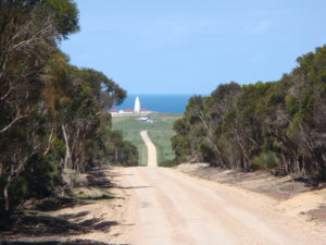 kangaroo-island-facts