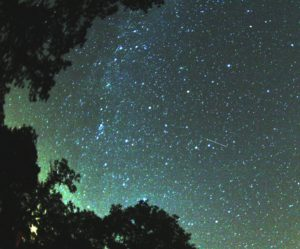 perseids-facts