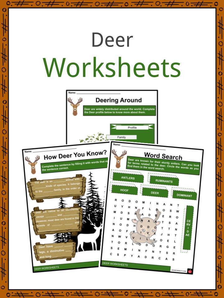 Deer Worksheets