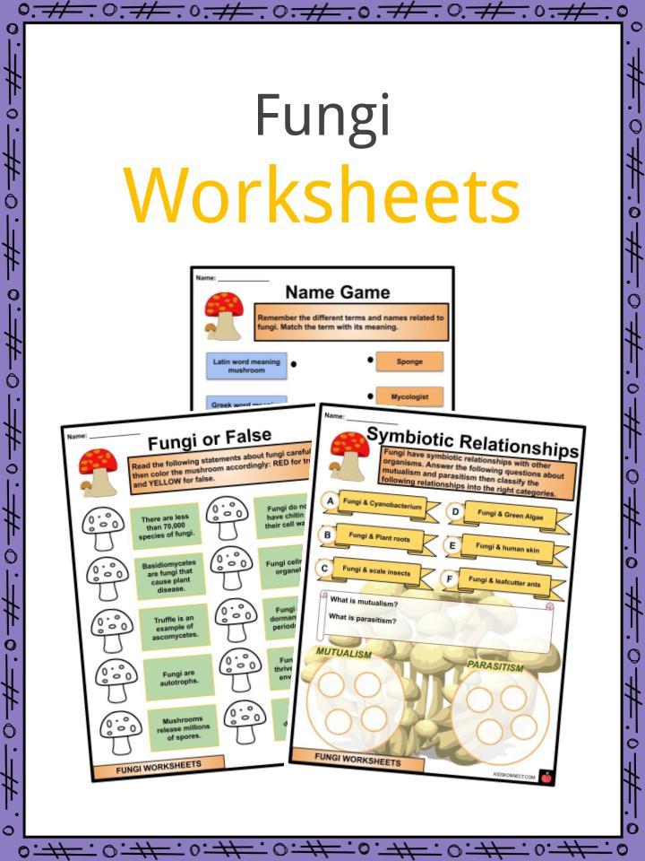 Fungi Worksheets