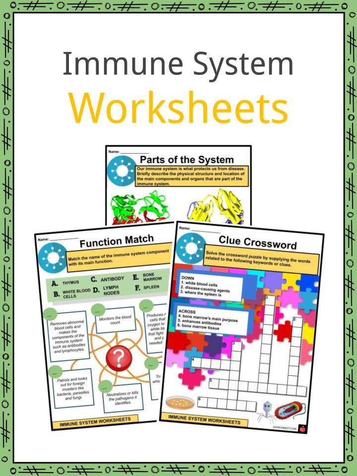 Immune System Facts Worksheets Parts For Kids