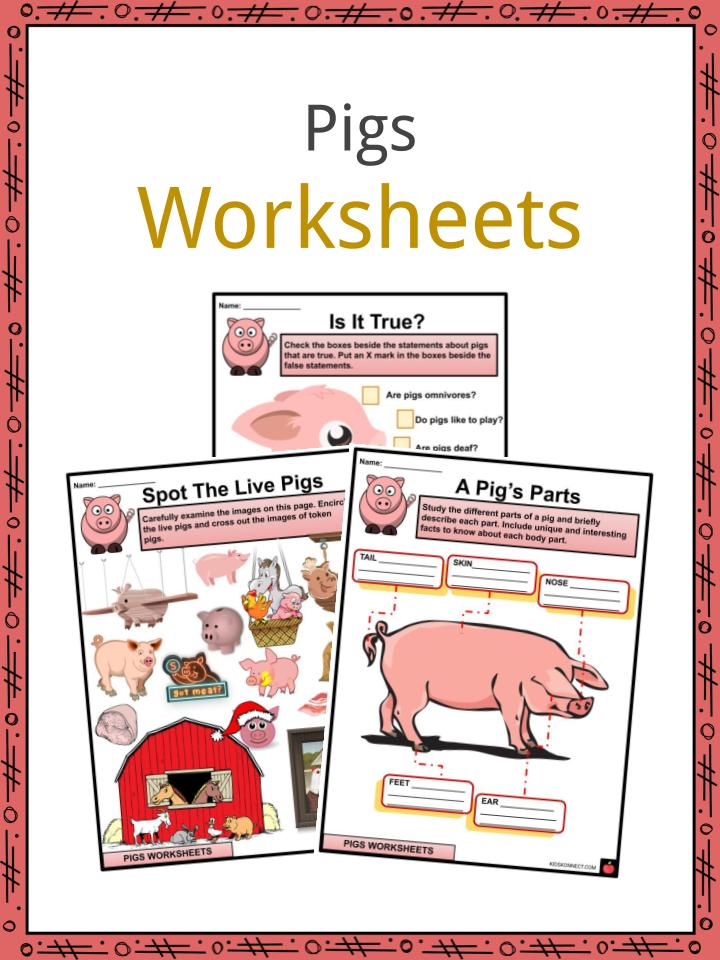 Pigs Worksheets