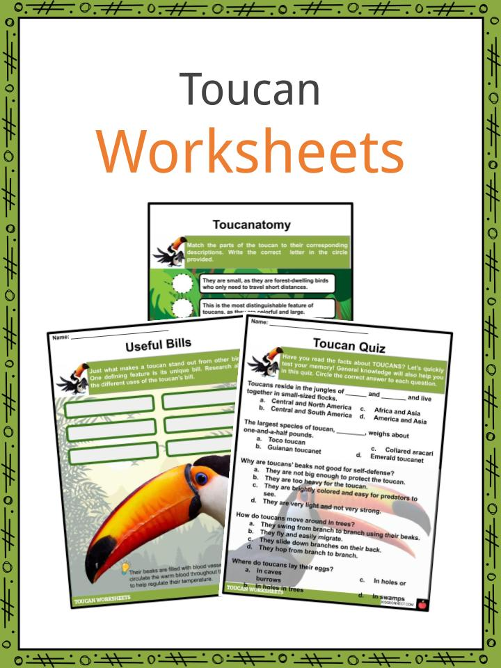 Toucan Worksheets