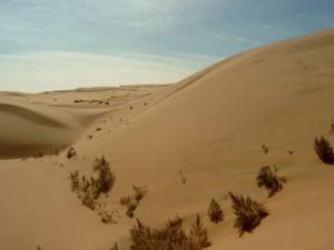 gobi-desert-facts