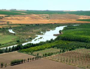tigris-river-facts