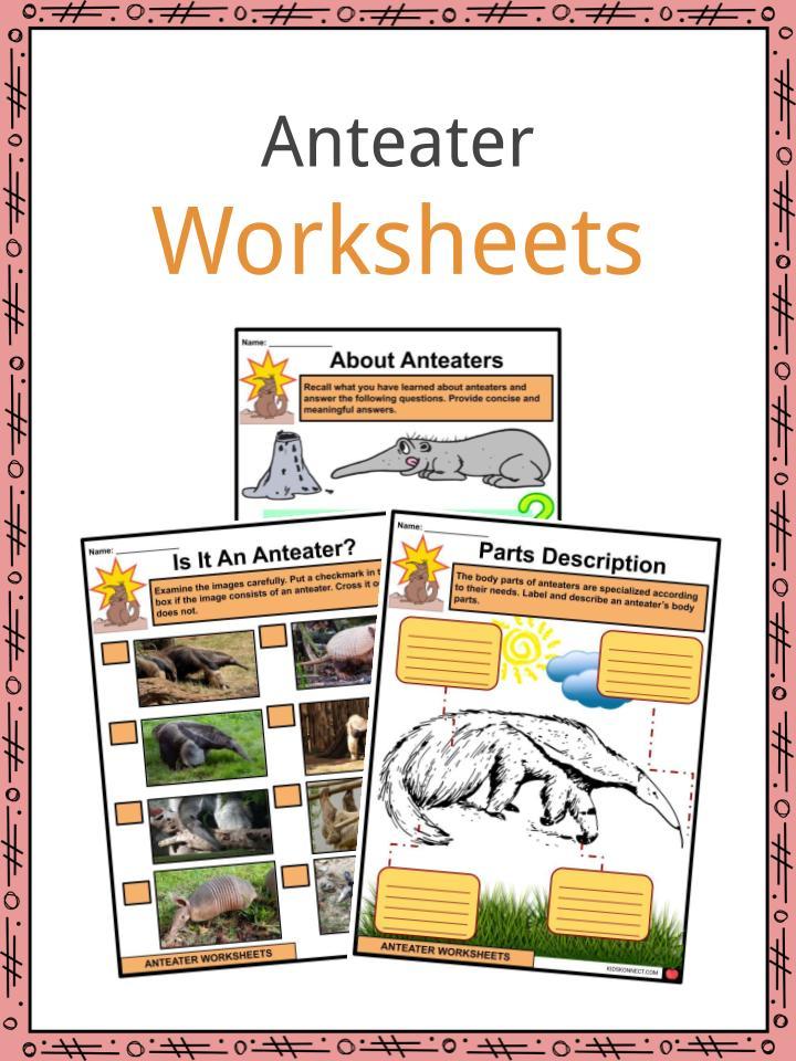 Anteater Worksheets
