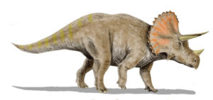 plant-eating-dinosaurs-facts