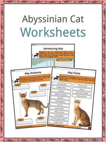 Abyssinian Worksheets