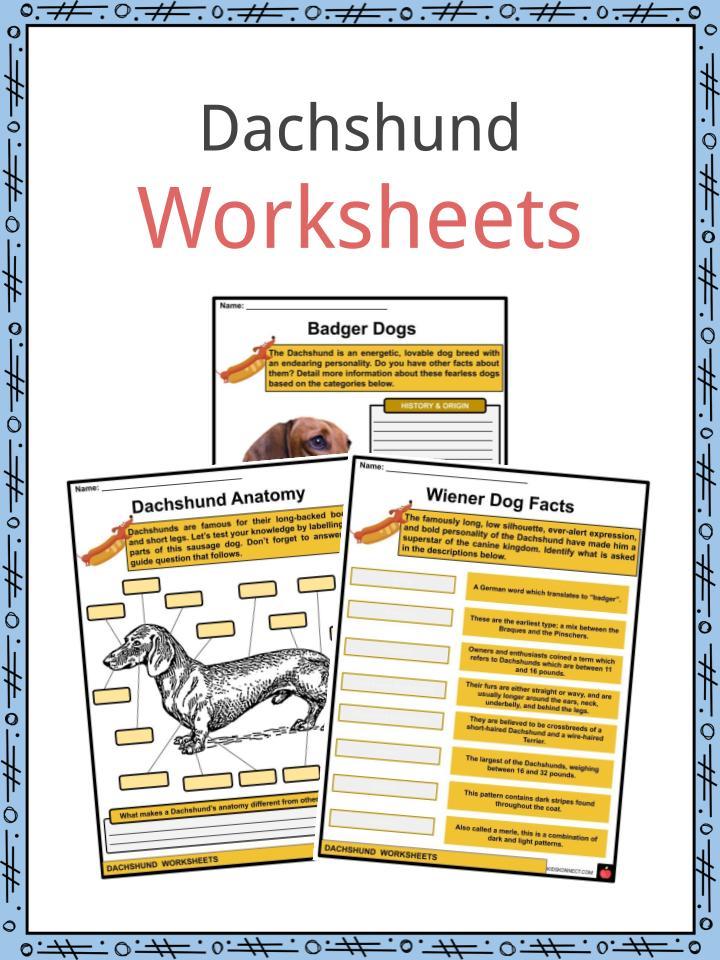 Dachshund Worksheets