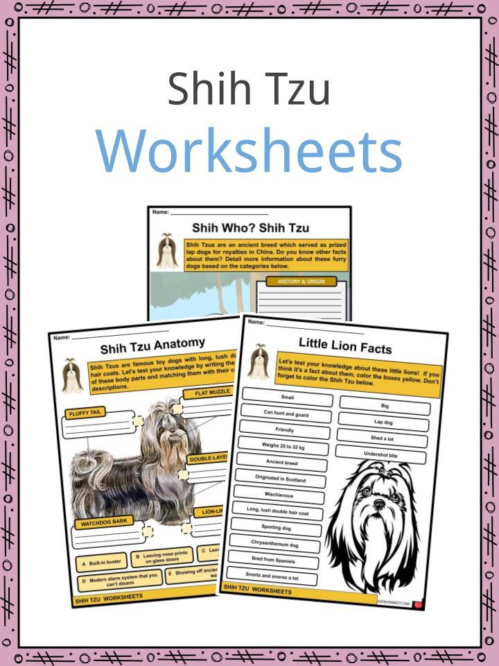Shih Tzu Worksheets