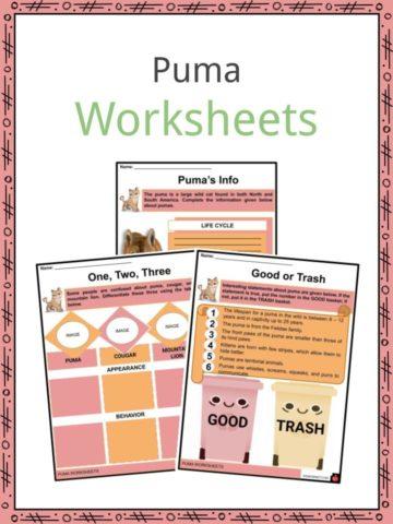 Puma Worksheets
