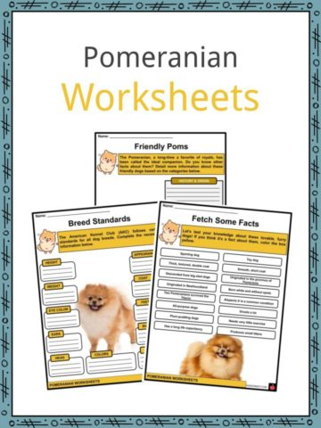 Pomeranian Worksheets