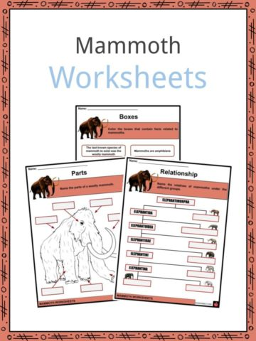 Mammoth Worksheets