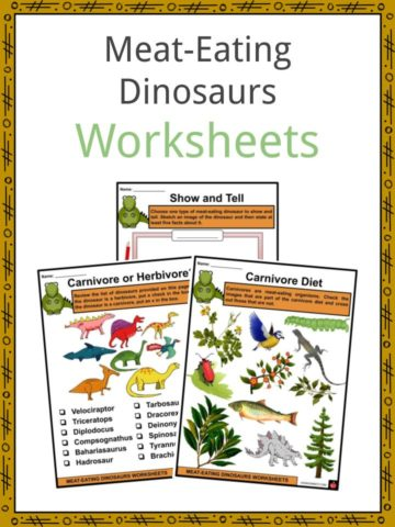 Meat-Eating Dinosaurs Worksheets