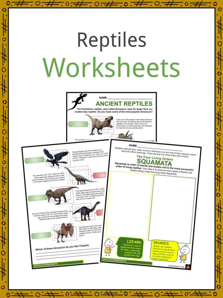 Reptiles Worksheets