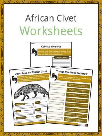 African Civet Worksheets