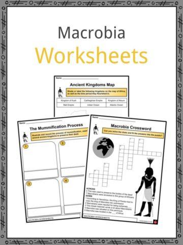 Macrobia Worksheets