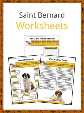 Saint Bernard Worksheets